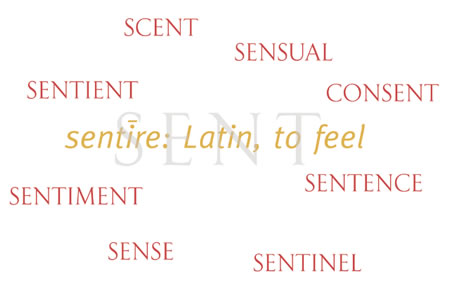 The fragrance of truth | exploring the emotionality of scent in brand and consciousness