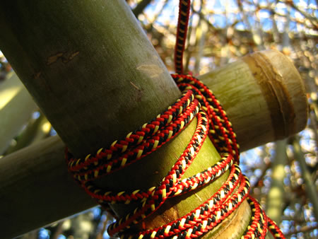 Exploring place and experience: 24 hours (in four parts)   Part one - Big Bambu