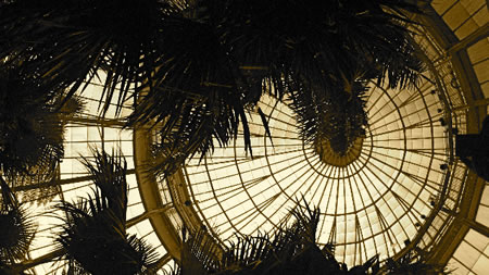 Exploring place and experience: 24 hours | Part three - New York Botanical Garden