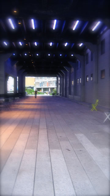 Exploring place and experience: 24 hours | Part four - The High Line