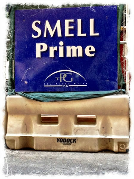 Trending scent strategies | the track to knowledge