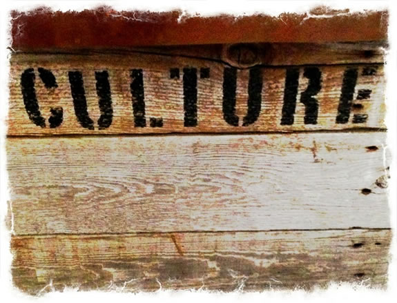 THE CULT OF CULTURE