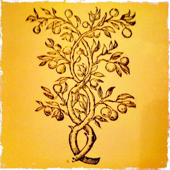 Mystical Brands