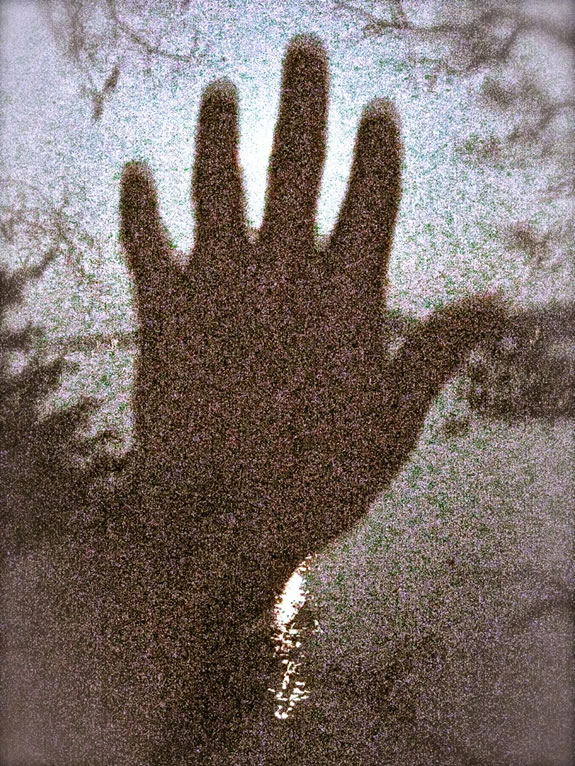 The Hand Speaks