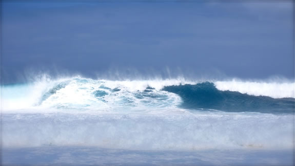 THE HIGH AND LONG WAVE   BRAND SURFING