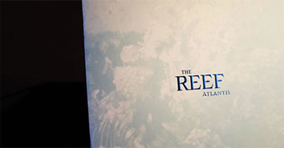 Kerzner The Reed Merchandising