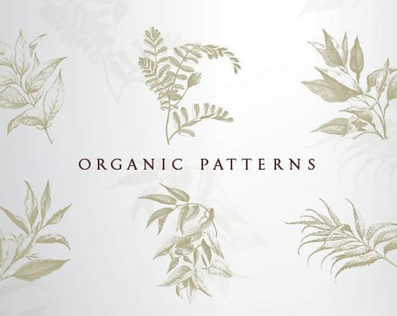 Patterns developed GIRVIN for Bastyr materials