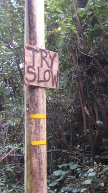 Go Slow, Go Sure