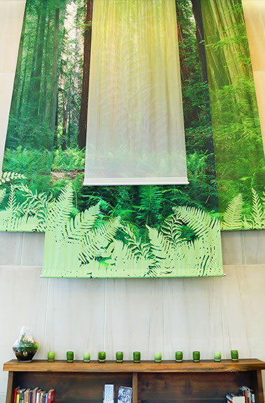 SCCA Proton Therapy Forest Wall Graphics