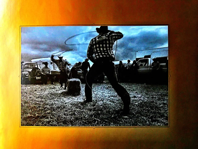 COWBOY UP   BRAND STRATEGY AND DESIGN FOR COWBOYS